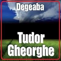 Tudor Gheorghe-Degeaba